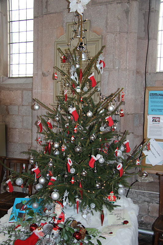 Christmas Tree Pictures Crediton Parish Church